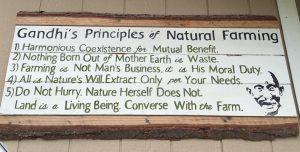gandhi principles